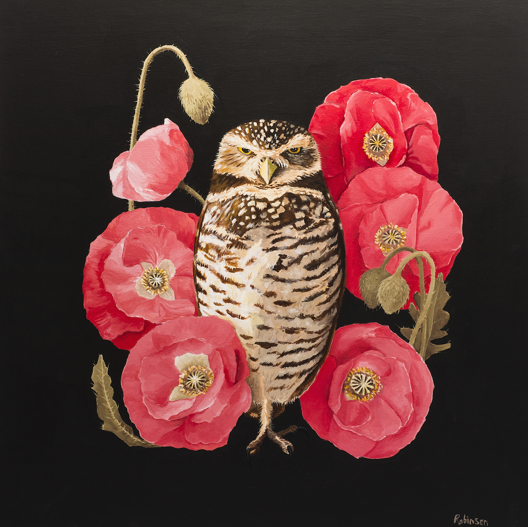 Burrowing Owl painting acrylic on panel
